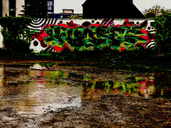 Mad and Muddy (Steve Taylor (Photography)) Tags: puddle mud art digital graffiti streetart tag wall brown black green red white water newzealand nz southisland canterbury christchurch cbd city ivy reflection
