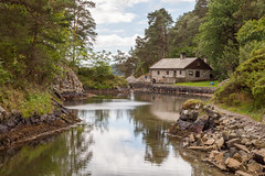 A peaceful scene (Daniel Vicario) Tags: bergen hordaland norway no