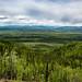 Aussichtspunkt am Klondike Highway