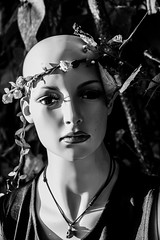 _MG_6000 (amiemcgovern) Tags: mannequin mannequins surreal surrealism fantacy manmadevsnature manmade story society doll flowers nature creepy scary human humanfigure shape perfection beauty fake lies