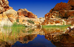 Calico Tank Reflections, Nevada  - Explore (Rita Eberle-Wessner) Tags: rocks felsen landschaft landscape tank water reflection teich spiegelung wasser redrockcanyon nevada usa mojave