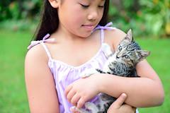 day 4 (© Adrian Rahardja) Tags: emma daughter ocha kitten winter bogor indonesia adrianrahardja