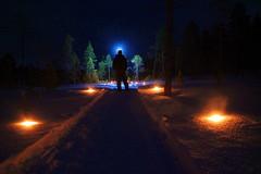 X-Ray Cyclops (Pál Bámgarðr) Tags: europe norway norge finnmark finnmarken steinbakk skjelvatnet cold darkness night light torch headlight winter freezing paul baumgart paulbaumgart eos 550d eos550d svanvik sørvaranger pasvikdalen outdoor nature