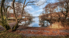 Tranquility (Einir Wyn Leigh) Tags: landscape lake water clouds shadows trees green natur natural nature orange gold foliage winter tranquil peaceful view scenery digital outdoor wales blue march light sunlight reflection beauty camera nikon rural flower