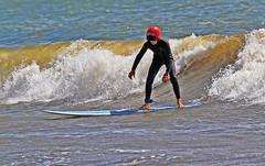 Hjälmförsedd 3 (Quo Vadis2010) Tags: westcoast västkusten kattegatt hallandslän halland municipalityofhalmstad halmstadkommun halmstad sandhamn görvik cityofsurfers wavesurfing wavesurf vågsurfing vågsurf surfing surf vågor våg sea hav beach strand surfbräda bräda sport activity aktivitet lifestyle livsstil se