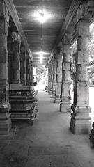 Marundeeshwarar Temple, Thiruvanmiyur (Devanathan Ram) Tags: temple blackwhitephotography thiruvanmiyur nammachennai mobileclicks marundeeshwarartemple