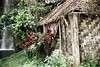 28-168 (ndpa / s. lundeen, archivist) Tags: cliff color building film fiji rural 35mm countryside waterfall nick hut southpacific watersedge shack 28 thatchedroof 1970s hillside 1972 dewolf oceania fijian pacificislands thatchroof nickdewolf photographbynickdewolf reel28