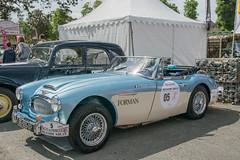 1960 Austin Healey 3000 MKIII (LE VOUEDEC Marie-Claire/LE VOUEDEC Jacqueline) (el.guy08_11) Tags: france ledefrance voiture collection fr 1960 austinhealey rueilmalmaison