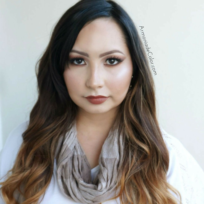 Maquillaje marron 3