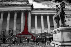Weeping Window (AndrewABibby) Tags: london st liverpool hall sunday poppy poppies soldiers remembrance georges stgeaorgeshall weepingwindow