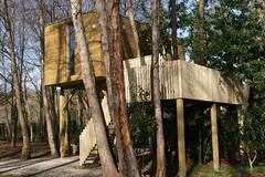 Cabañitas del Bosque 12