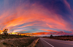 MIKE9197-Pano (Michael William Thomas) Tags: park blue wedding sunset red sky panorama orange landscape photography buffalo photographer desert joshua joshuatree rochester national mojave mohave westernnewyork sunse mikethomas michaelthomas mtphoto michaelwthomas