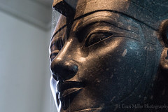The Head in the Web (H. Evan Miller) Tags: london museum ancient web sony spiderweb egypt cobweb egyptian alpha britishmuseum pharoh nex a6000 hevanmiller ilce6000