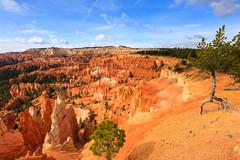 Bryce Canyon, au petit matin (Matthieu THIERRY) Tags: utah unitedstates bryce brycecanyon tatsunis sunrisepoint