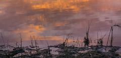 _DSC0299 (johnjmurphyiii) Tags: 06416 autumn clouds connecticut connecticutriver cromwell dawn originalnef riverroad sky sunrise tamron18270 usa johnjmurphyiii