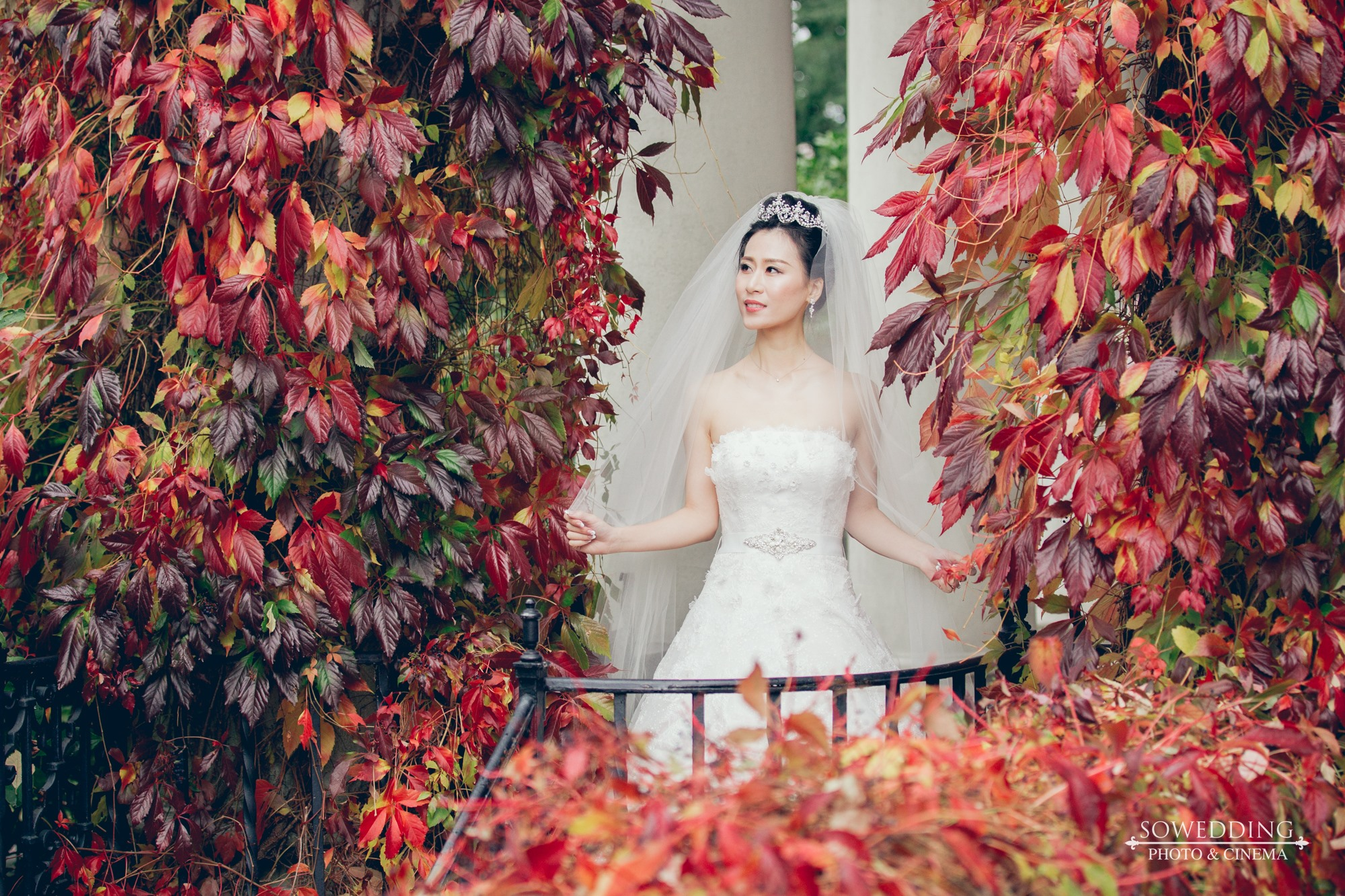 BeiWang&QiyuZhao-Wedding-HL-SD-0080