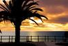 La Caleta, Teneriffa, ES (Dr. Barloi) Tags: illes spanien es sunset sea meer wasser rot sky orange outdoor sonnenuntergang himmel wolke heiter teneriffa