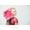 Sephora (dominikfoto) Tags: studio shooting book fusina girl portrait flower rose pink blond fusinadominik