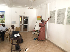 Feed the Future Mali Livestock Technology Scaling (MLST) Project: livestock disease management workshop