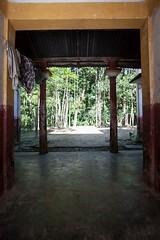 5D8_7404 (bandashing) Tags: frame pillars village house bangla red yellow white historic trees lush green sylhet manchester england bangladesh bandashing socialdocumentary aoa akhtarowaisahmed
