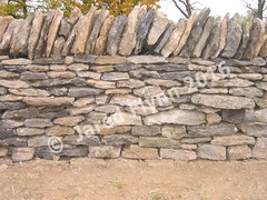 Jared-flynn-kentucky-limestone-stone-wall
