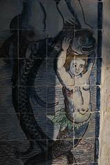 Petite Sirène (Jean (tarkastad)) Tags: tarkastad portugal azulejos musée museum lisbonne lisbon lisboa bestioles fisk fish poisson