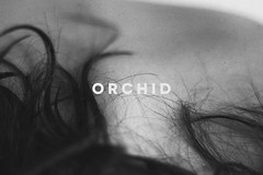 ORCHID (Nyebtw) Tags: photo art canon nude hair neck blakandwhite