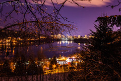 Violet city night. (rystaquay) Tags: trees inlet sea cold snow winter nightshots longexposure nopeople noperson night canonxsi canon