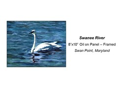 "Swanee River • <a style=""font-size:0.8em;"" href=""https://www.flickr.com/photos/124378531@N04/31659616714/"" target=""_blank"">View on Flickr</a>"