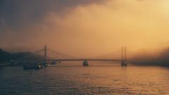 Mystic River (Andrew G Robertson) Tags: thames river battersea chelsea albert bridge canon 5d mkiv mk4 fog mist london