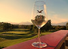 IMG_0524 Happy New year 2017 (pinktigger) Tags: stork glass villaverdegolfclub fagagna feagne italy italia friuli