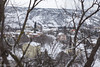 neve a lanciano (`Olivier Jules`) Tags: lanciano abruzzo italia italy neve snow schnee maltempo bontempo san nicola rocco fiat seicento tombino grata alberi palazzo capitano people street torre giovalli candelora giovanni piazza plebiscito via degli agorai dei frentani lorenzo