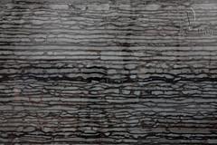 Zebra Marble (Keira61527) Tags: exterior exteriordesigner designer decorideas decoration decorating design decor homedecor interior tiles interiordesigner indoor buildingmaterials china architecture mosaics architects stonetile stonemosaic naturalstone marble slabs stone stoneslab