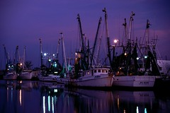 Shrimp Boats at Tarpon Springs i (Baker Pics and Whatnot) Tags: tarponsprings shrimpboats tarpon springs shrimp boat sunrise 1996 florida