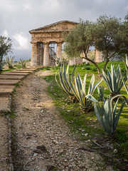 Segesta-2 (aramshelton) Tags: sicily greek greektemple ancient goldenhour