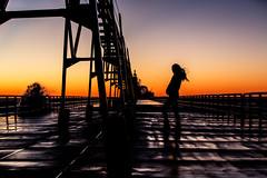 2017 0308 St. Joe Pier-285-Edit (greenshots32) Tags: mckenziehassle michellehassle nature silverbeach snowandice tiscorniabeach tiscorniapier beach bigwaves seagulls sunset winter