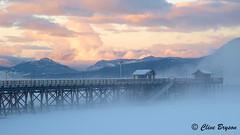Salmon Arm Wharf in winter (clive_bryson) Tags: winter wharf salmonarm