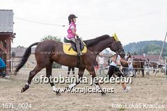 157L_0024 (Lukas Krajicek) Tags: cz kon koně českárepublika jihočeskýkraj parkur strmilov olešná eskárepublika jihoeskýkraj