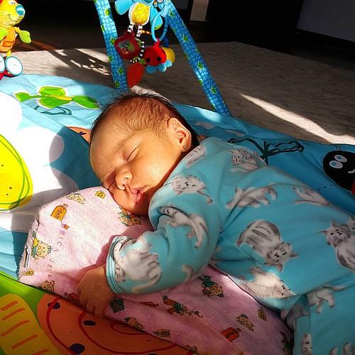 #arianitahermosa #dormida #sol #sun #ricavida