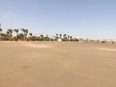 Beach (creepyweirdslove) Tags: red sea summer vacation sun hot tree beach nature beautiful river day desert egypt palm nile karnak luxor hieroglyphics scarab 2015 obelisc