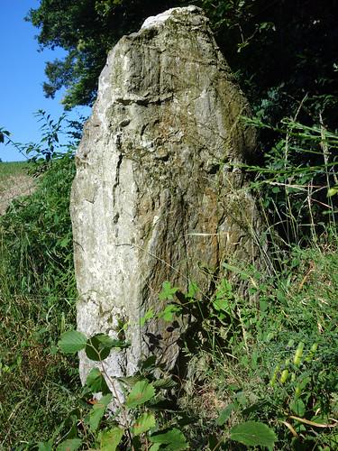 Le menhir dit « La Roche » près d'Uzel - Côtes-d'Armor - Juillet 2015 - 05