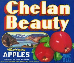 """Chelan Beauty • <a style=""""font-size:0.8em;"""" href=""""http://www.flickr.com/photos/136320455@N08/21283667780/"""" target=""""_blank"""">View on Flickr</a>"""