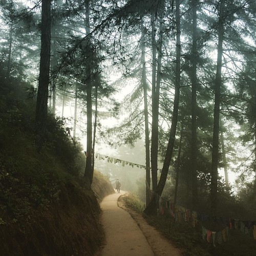 A short mid-way reprieve from our 6 hour hike to #tigersnest today. We caught the early morning mist and ended the trek with the sun and a picnic. #Bhutan #uwcsea_east #uwcsea_outdoored