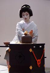 -35 (nobuflickr) Tags: japan kyoto       kimobo kamigamojinjashrine  20151103dsc06554
