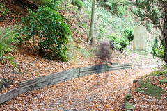 20151031_111418 (uk_frogman) Tags: cemetery graveyard ghost location scarborough northyorkshire deanroad
