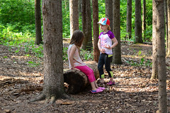 Resting on a Log (Vegan Butterfly) Tags: trees friends people nature kids children outside outdoors log edmonton walk trail together alberta homeschool homeschooling