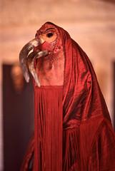 Maschera (jacopomalusardi) Tags: sardegna zeiss 50mm 14 contax epson fujifilm 100 cagliari aria maschera sensia v550 planar