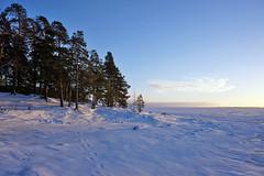 Joensuu - Finland (Sami Niemeläinen (instagram: santtujns)) Tags: joensuu suomi finland maisema landscape talvi winter luonto nature lumi snow jää ice frozen järvi lake jäinen pohjois karjala north carelia sunset auringonlasku
