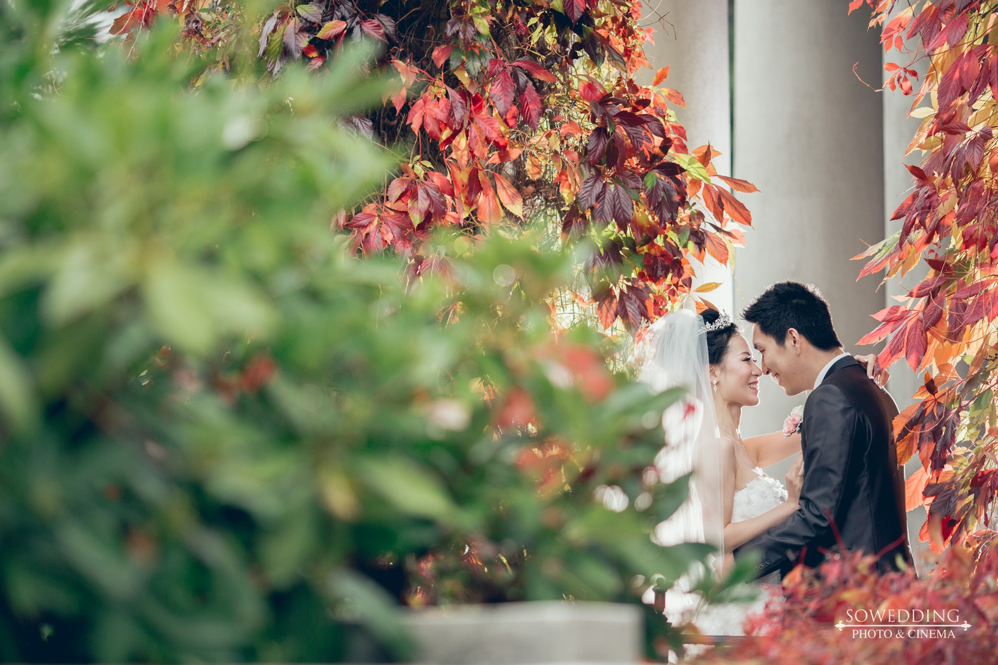 BeiWang&QiyuZhao-Wedding-HL-SD-0086