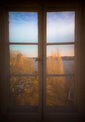 Stockholm desember -2139 (hakon.grimstad) Tags: stockholm sweden waldemarsudde prinseugen window sight winter colours sun sea tree leaves